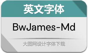 BwJames-Medium(英文字体)