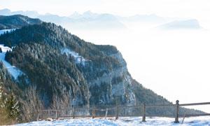 在山上的雪后树林风光摄影高清图片