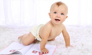 在毛毯上学习爬的宝宝摄影高清图片