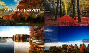 35款风景照片转秋季美景效果LR预设