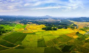 野外农田风光全景摄影图片