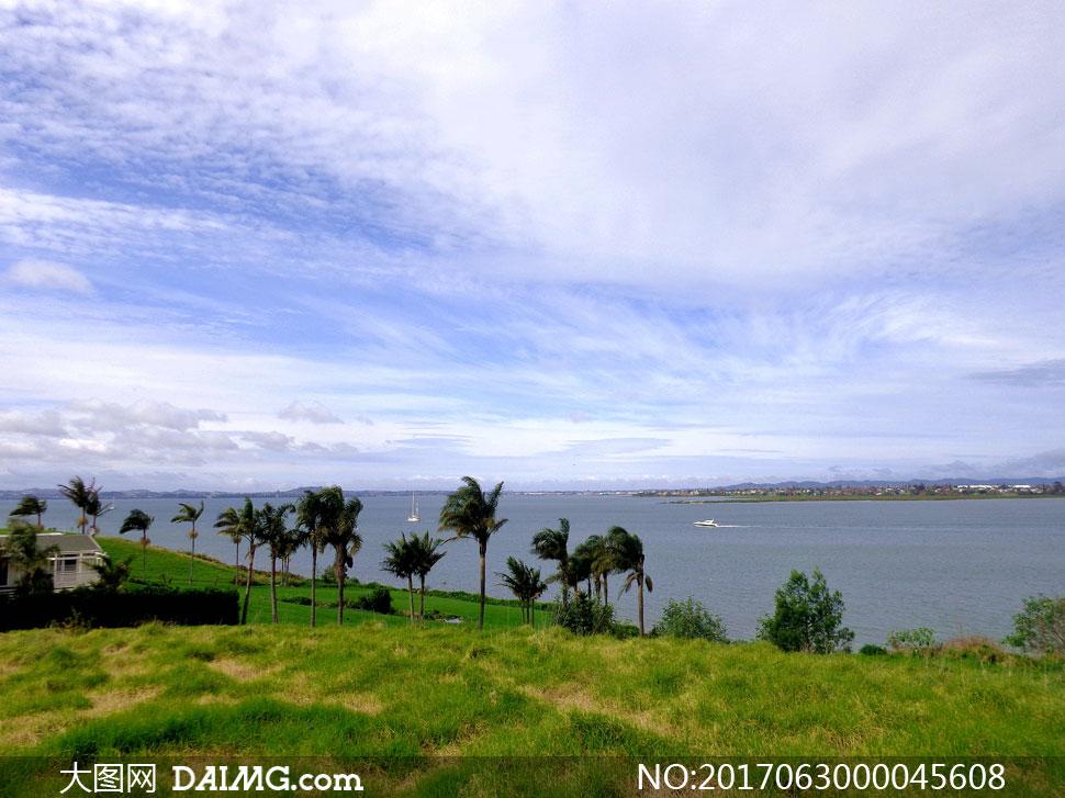 新西兰海滨自然风景摄影图片 - 大图网设计素材下载