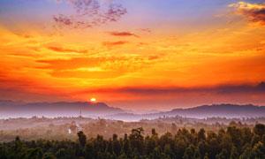 山中森林晚霞美景摄影图片