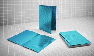 三种视角的折叠小册子贴图模板文件