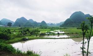桂林田园美丽风光摄影图片