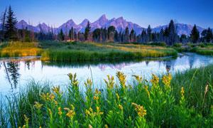 山脚美丽的草原和河流摄影图片