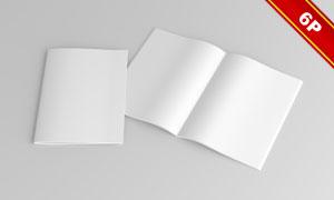 A4尺寸规格画册应用效果贴图源文件