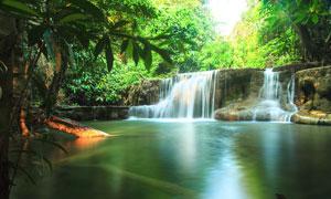 森林中美丽的小溪和瀑布摄影图片