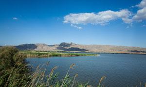 青铜峡湿地公园美丽湖泊摄影图片