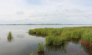 湖泊中美丽的水彩摄影图片