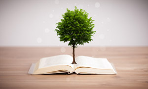长出大树的一本书创意设计高清图片