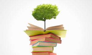 一摞书上生长出来的树摄影高清图片