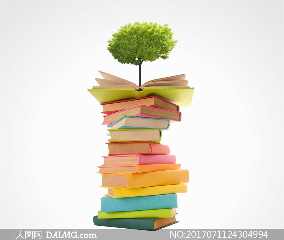 关 键 词: 高清大图图片素材创意大树书本书籍一摞书小树树木 注意