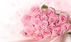 丝滑布上的粉红色花束摄影高清图片