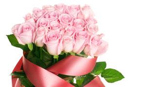 粉红色的新鲜玫瑰花束摄影高清图片