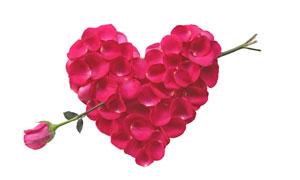 红玫瑰花瓣组成的心形图案高清图片