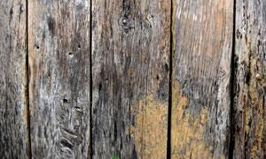 发霉了的木板纹理背景摄影高清图片