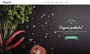 健康有机食品主题网站页面分层模板