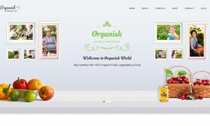 绿色有机食品公司网站设计分层模板