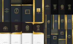 底纹图案与金色装饰边框矢量素材V2