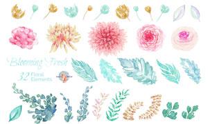 41款水彩系列花朵和藤蔓PS笔刷