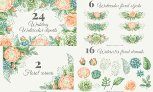 24款水彩藤蔓和花束PS笔刷