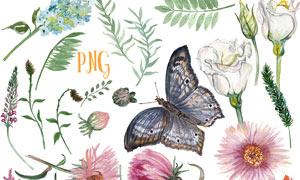 水彩植物藤蔓和蝴蝶PS笔刷