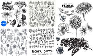 手绘风格黑白效果花卉植物矢量素材