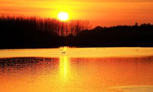 天鹅湖美丽夕阳摄影图片