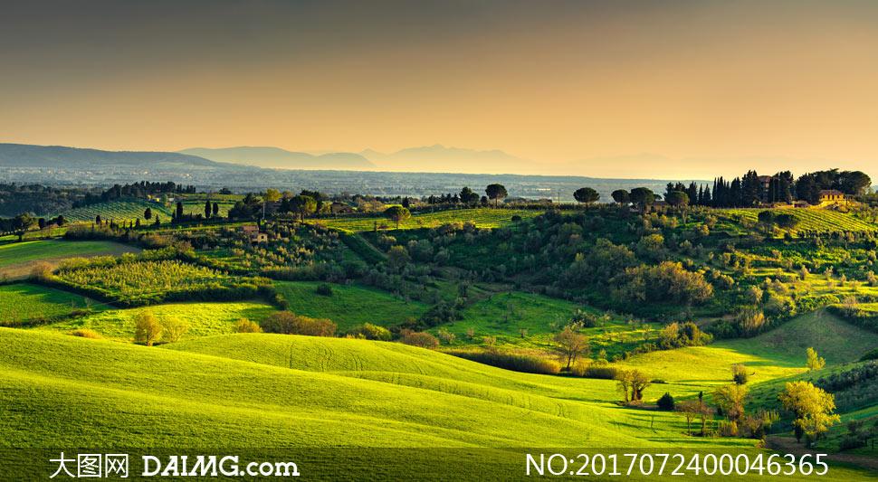 田园美丽的草原风光摄影图片