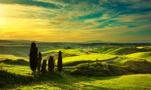 夕阳下的美丽大草原摄影图片