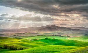 阳光下的草原美景摄影图片