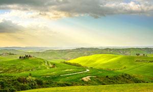 阳光下的美丽草原摄影图片