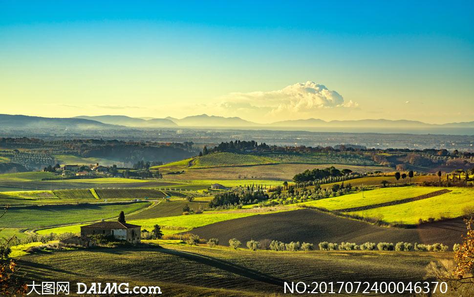 大图首页 高清图片 自然风景 > 素材信息          绿色草原清晨美丽