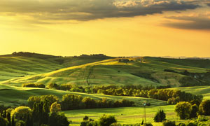 绿色草原清晨美丽风光摄影图片