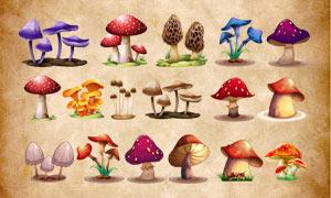 高清晰卡通蘑菇PS笔刷