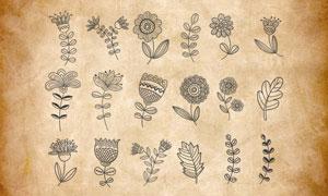 简约手绘花朵和藤蔓PS笔刷