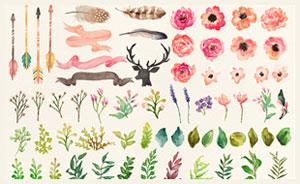蔬菜花朵藤蔓和箭头PS笔刷