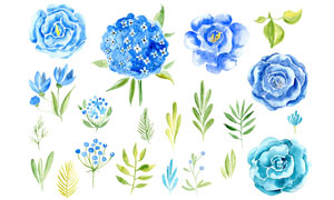 21款水彩花朵和藤叶PS笔刷
