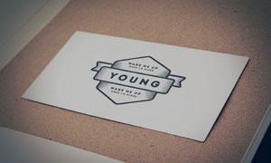 卡片上的怀旧风格标志图案贴图模板
