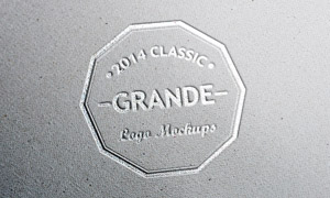 纸上质感烫银效果标志应用贴图模板