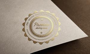 纸张金粉质感效果标志图案贴图模板
