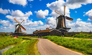 蓝天下的风车和道路摄影图片
