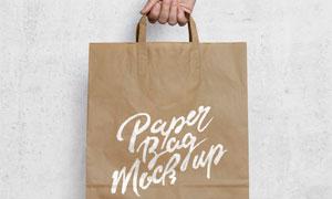 提在手里的纸质购物袋视觉贴图模板