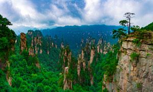 张家界群山全景摄影图片