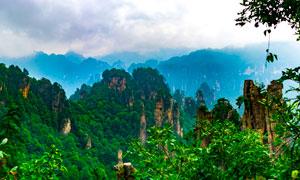 张家界唯美的群山景观摄影图片