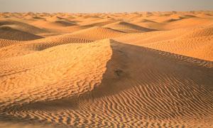 撒哈拉沙漠美丽沙丘摄影图片