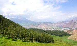 山间美丽的森林景观摄影图片