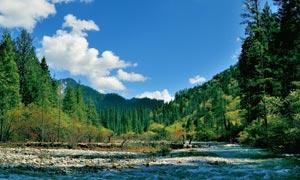 蓝天下的美丽山林摄影图片