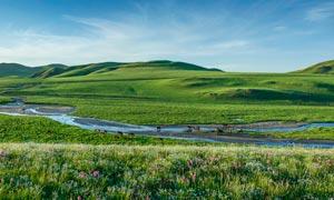 内蒙古大草原美丽全景摄影图片